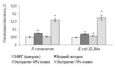 биопленкообразование P. carotovorum и E. coli