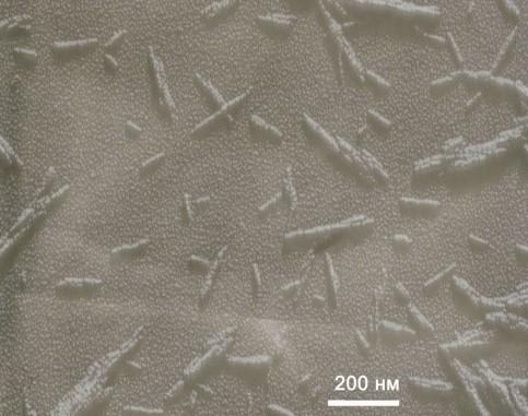 Микрофотография частиц НКЦ