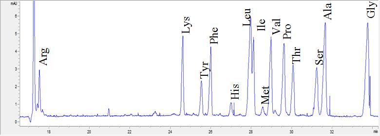 Электрофореграмма аминокислот