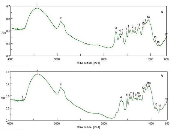 ИК-спектры исходного и модифицированного образцов сосны